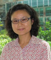 Peiwen Fei, MD, PhD, Cancer Biology Program