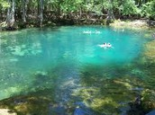 River and springs Water lifeblood: