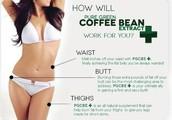 Work burnining How fat green coffee?