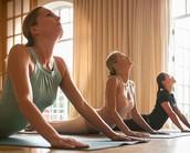 Студия йоги +42°С