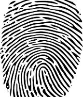 Fingerprint of the Babel Fish