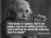 Geniuses!