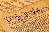First look at the Constitution