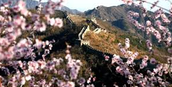 Great Wall of China during spring