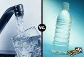 tap water and botteld water