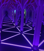 Numbers in Nature Mirror Maze