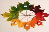 Collect leaves and make a wreath.