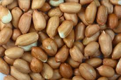Beans, seeds, nuts,