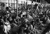 What are the causes and results of the Bengal Famine in 1943?