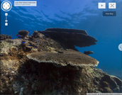 15 of the Best Pages from Google Culture Institute