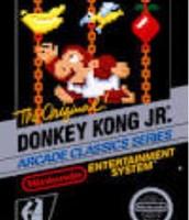 NES donkey kong jr
