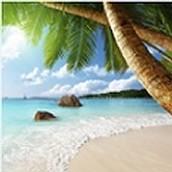Top 10 Beaches for Honeymoons