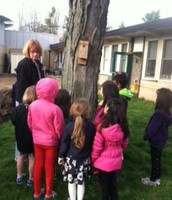 Observing birds and birdhouses during our Garden lesson