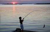 Ir a pescar