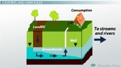 What is groundwater and what processes make water groundwater?