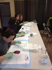 JOIN US FOR A Two DAY INTENSIVE HANDS-ON CLINICAL SKILLS WORKSHOP