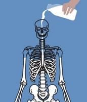 Proper Bone Development