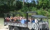 Jeep Safari Adventure Tour