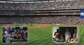 Gigapixel Images Connect Sports Teams with Fans