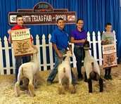 FFA Members Gain Awards at North Texas State Fair