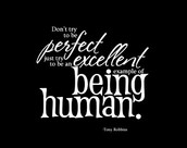 Try to be perfect intending to be excellent