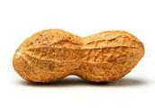 Peanut/Nut Safe Classrooms