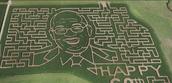 Corn Maze Trip