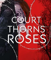 A court of thorns and roses /bk.1 by Sarah J. Maas