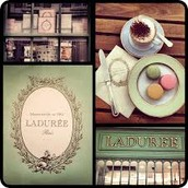 Collections des Macarons