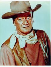 Learner Profile Of John Wayne#2
