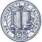 University of California - Davis