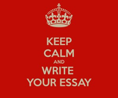 Essay Review