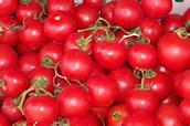 Lateesha's Tomatoes: 9.79