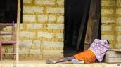 Sierra Leone passes Liberia in Ebola Case #'s
