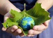 What is sustainable living? How could someone achieve sustainable living?  Do you personally think you could reach sustainable living?