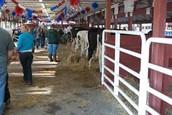 Ogamaw County Fair