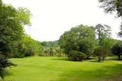 Gardens and green fields