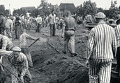 Work in Concentration Camps