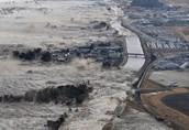 The tsunami in Japan