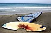 After shark attack