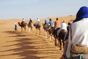 rutas en camello en Erg Chebbi