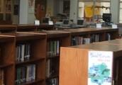 Sheridan High School Library