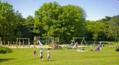 el parque-park