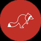 Waterstone Preschool Raccoon Class