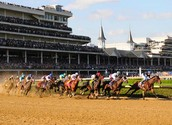 The Kentucky derby is the only national horse race on TV.