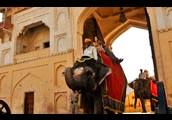Same Day Jaipur Tour India