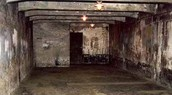 1 of many gas chambers