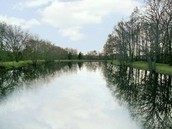 6 Acres of walking trails & a fishing pond