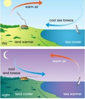 Land breeze, and sea breeze