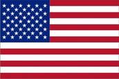 amaricen flag